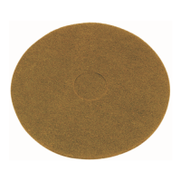 15 Inch (368mm) Tan Floor Pads